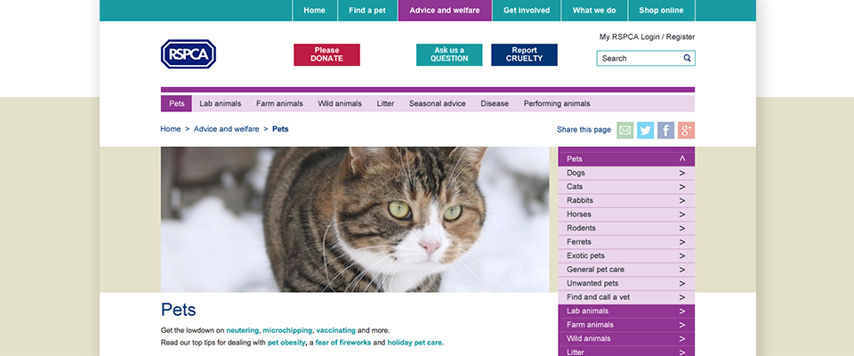 RSPCA-Website-Design-2